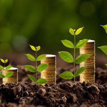 Bioeconomia: Moda ou Mudança? – Por João Arroyo
